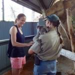 Heiki ist glücklich... endlich einen Koala gestreichelt :-)