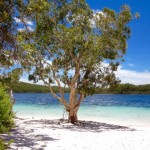 Fraser Island Paradise