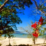 Hideaway Bay bei Airlie Beach