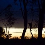 Ayers Rock Free Camping