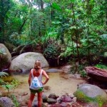Daintree Nationalpark - Mossman