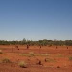 Outback - das muessten Termitenhuegel sein