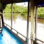 Borneo-Klotoktour