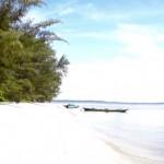 Turtel Beach