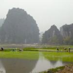 Ning Bing - Reisfelder überall