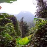 Phong Nha - Nationalpark