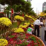 Saigon - Blumenstraße zum Tet-Fest (Wir haben nämlich nochmal Neujahr gefeiert :-))