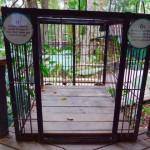 Luang  Prabang - Kaum zu glauben hier werden die Bären eingesperrt und das alles für Bärengalle :-(